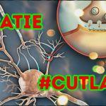 catie-cutlass