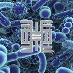 microbioma-dopo-i-50-anni