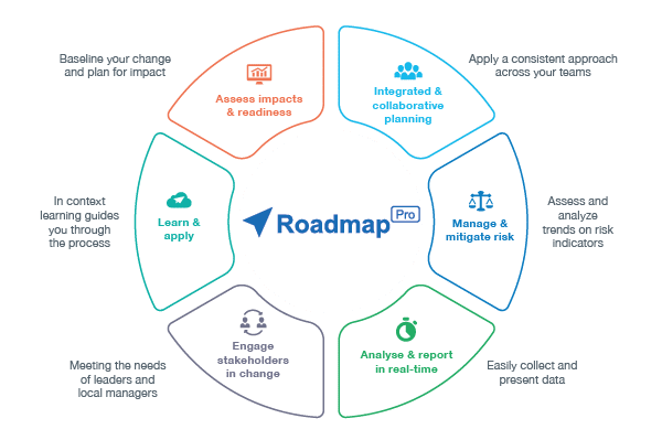 How RoadmapPro Works