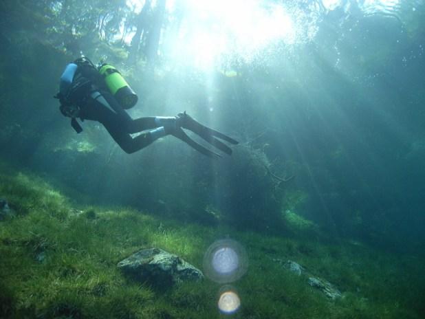 Austria Lago verde
