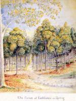 j.r.r._tolkien_-_the_forest_of_lothlorien_in_spring.jpg