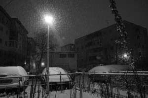 iarna-01
