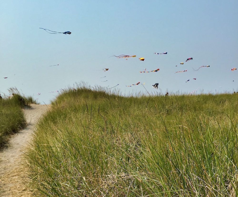 Things to Do in Long Beach, WA - Kites above the Beach