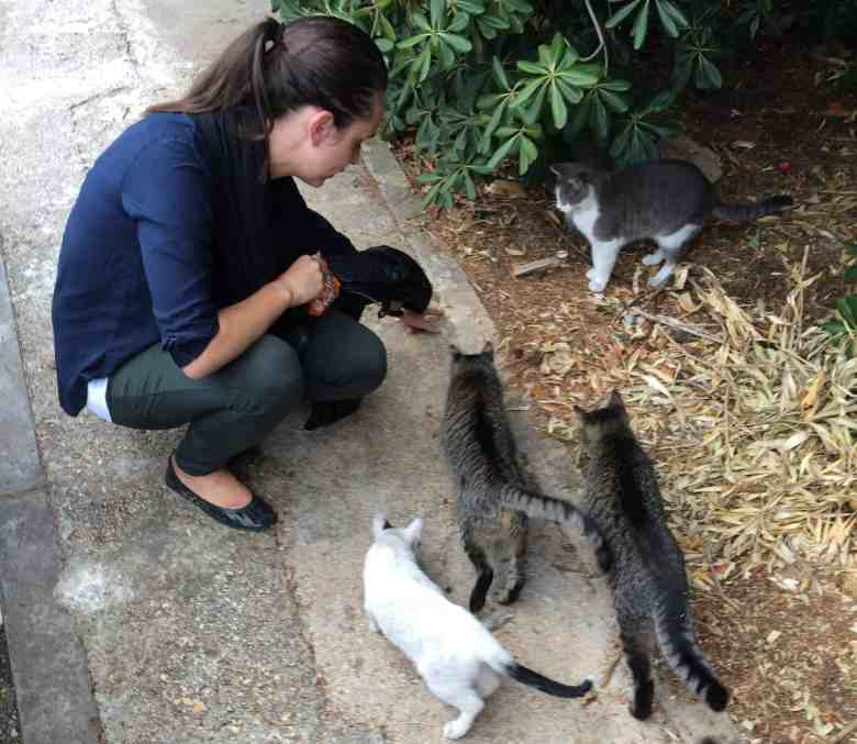 Feeding cat snacks to Captain Jack, Will, and their crew.