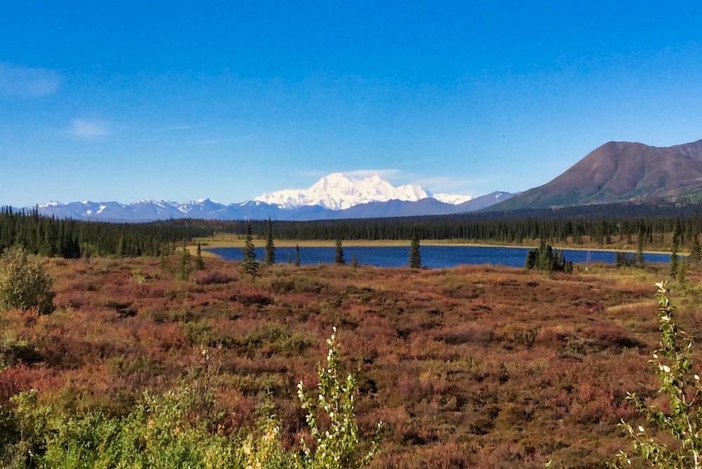 Denali Viewpoints - Broad Pass