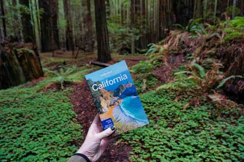 Lonely Planet Guide to California