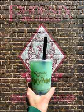 2018 Recap - February - Fishy Green Ale at Universal Orlando