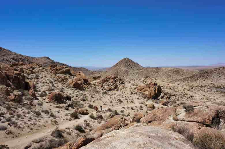 Joshua Tree Weekend Itinerary - 49 Palms Oasis