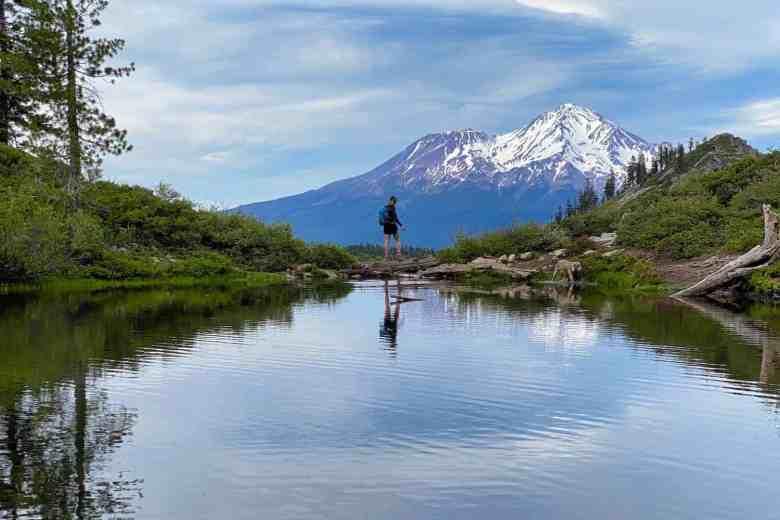 Mount Shasta Hero