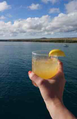 UnCruise Hawaii - Drink 1