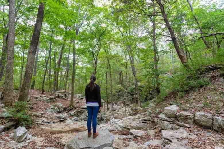 Huntsville - Land Trust of Northern Alabama
