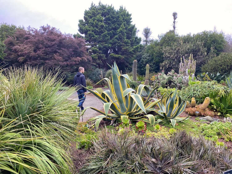 Mendocino Weekend - Botanical Gardens