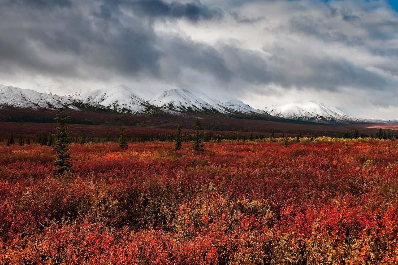 Alaska in Autumn Hero