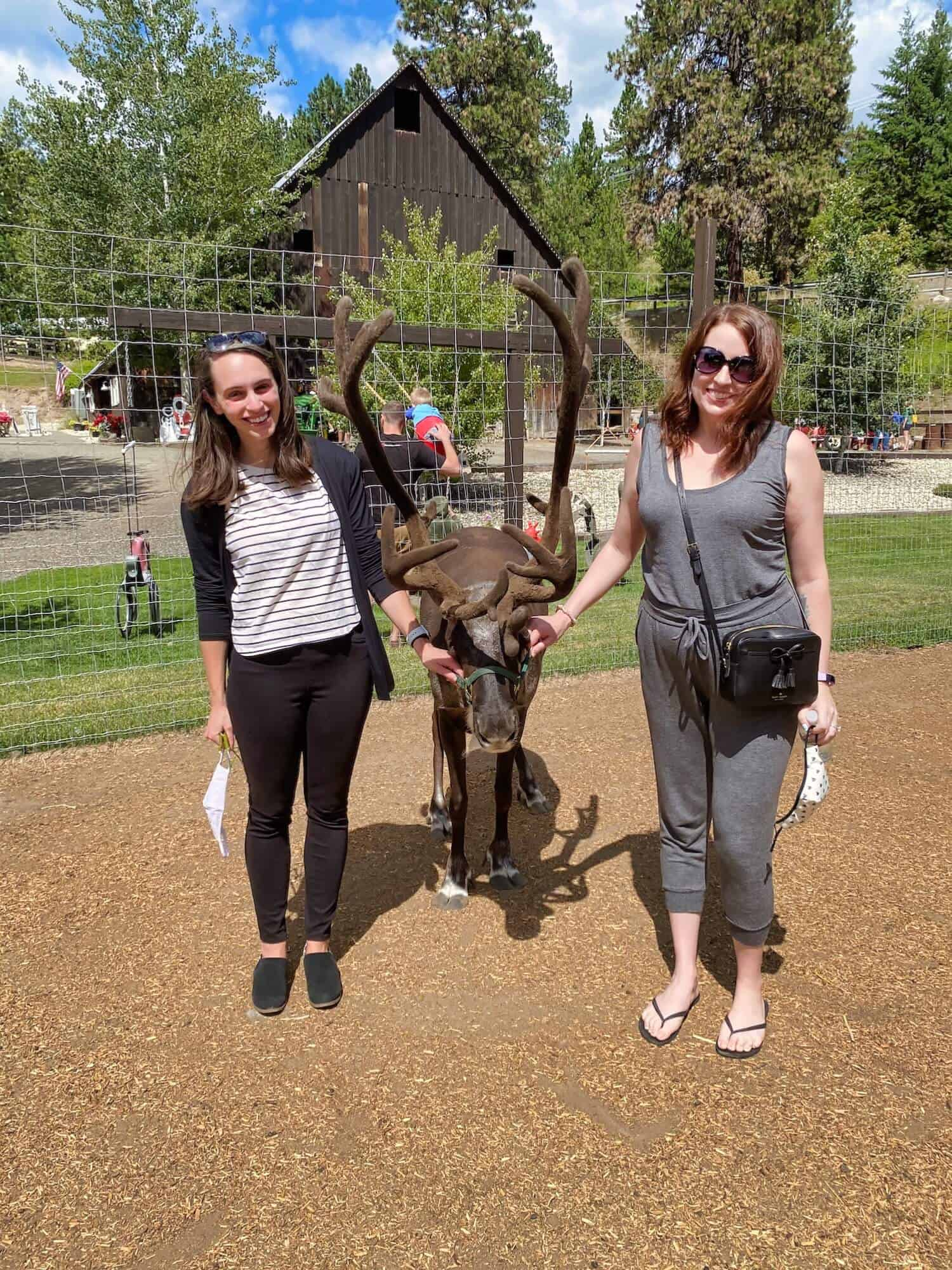 Leavenworth Bachelorette Party - Reindeer Farm