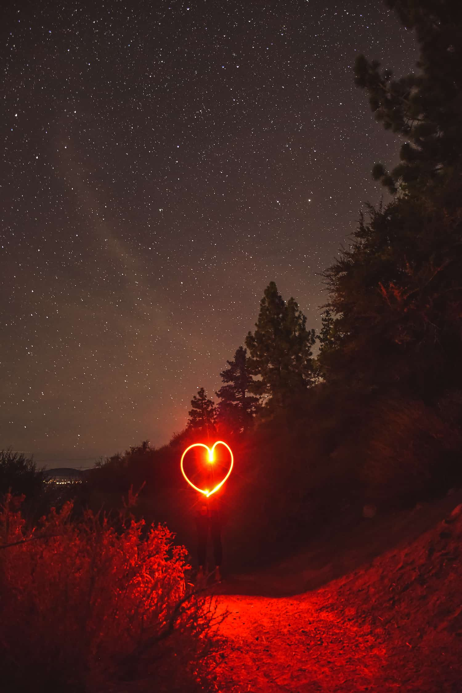 Things to Do in Carson Valley - Stargazing