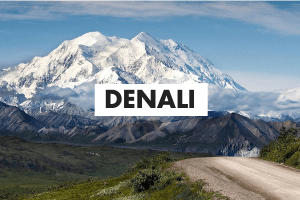 Denali Glossary Card