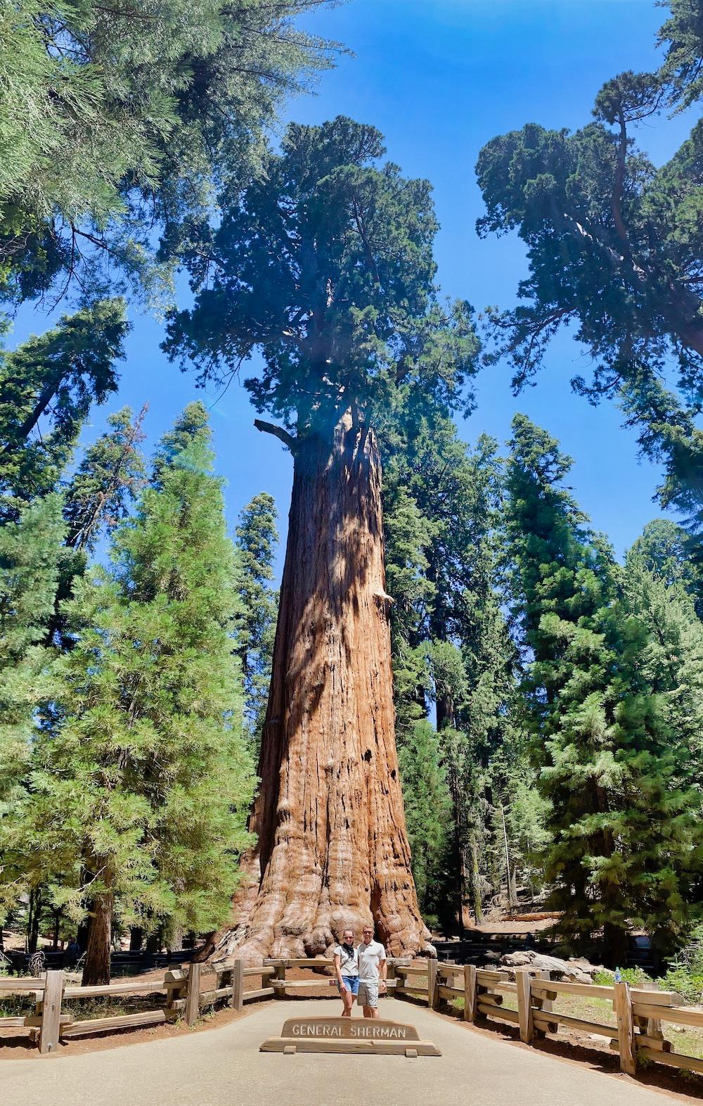 Sequoia National Park - General Sherman Tree