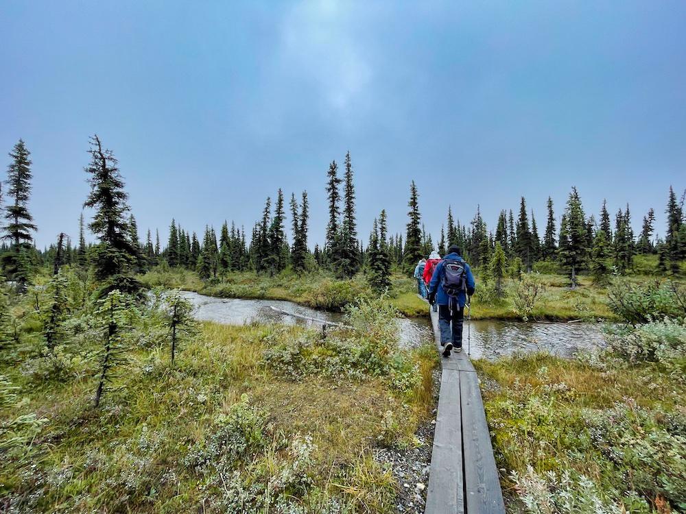 John Hall's Alaska Review - Day 5 - McKinley Bar Trail Hiking Group