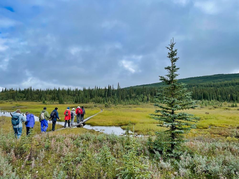 John Hall's Alaska Review - Day 5 - McKinley Bar Trail Group