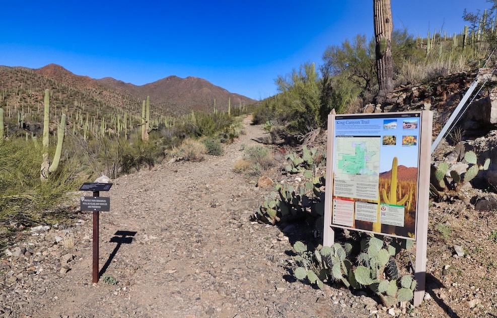 Saguaro National Park Itinerary - King Canyon Trailhead