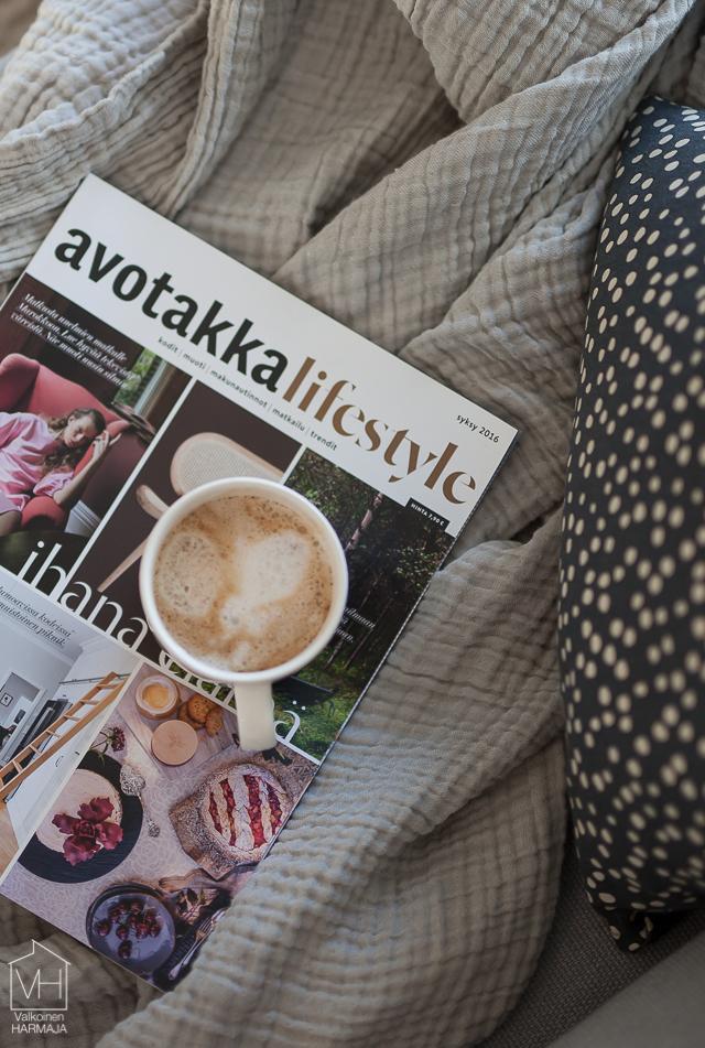 avotakka_lifestyle-4223