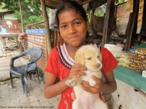 Rishikesh Animal Care Community FaceBook Page