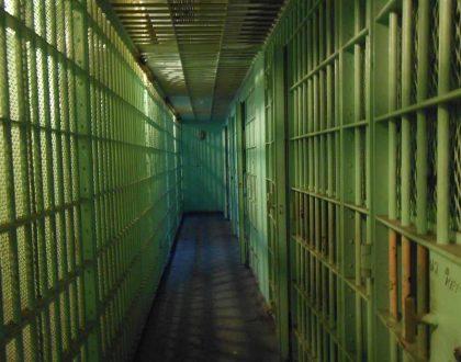 Licencias AB60: Documentos Falsos y Record Criminal