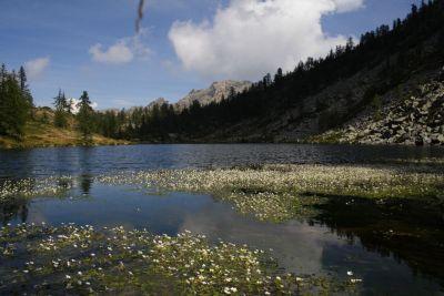 Horn Lake Mont Avic
