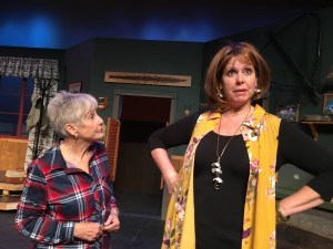Patte Quinn and Rhonda Bowen in Farce of Habit