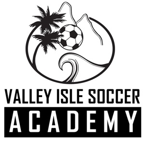 2013-2014 HYSA Schedule Released for VIS Academy Teams