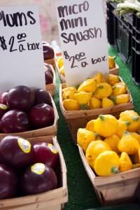 muskegon farmer's market-9652