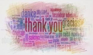 ZiyanSha_ThankYouCards3