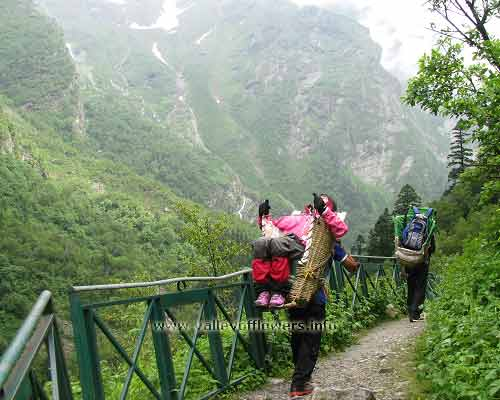 Porter carrying a lady to Valley of flowers
