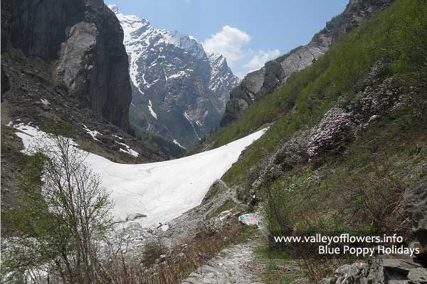 Other side of the Glacier in May 2013, This glacier is visible even till July last week.