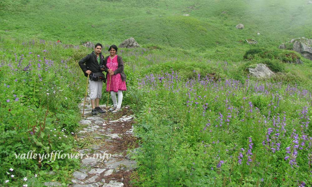 In the middle of the valley of flowers