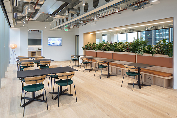 Planting for Offices in London by Valley Provincial