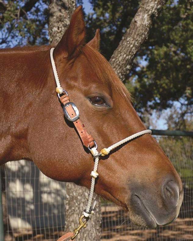 Adjustable Headsetter Tie Down Martin Saddlery
