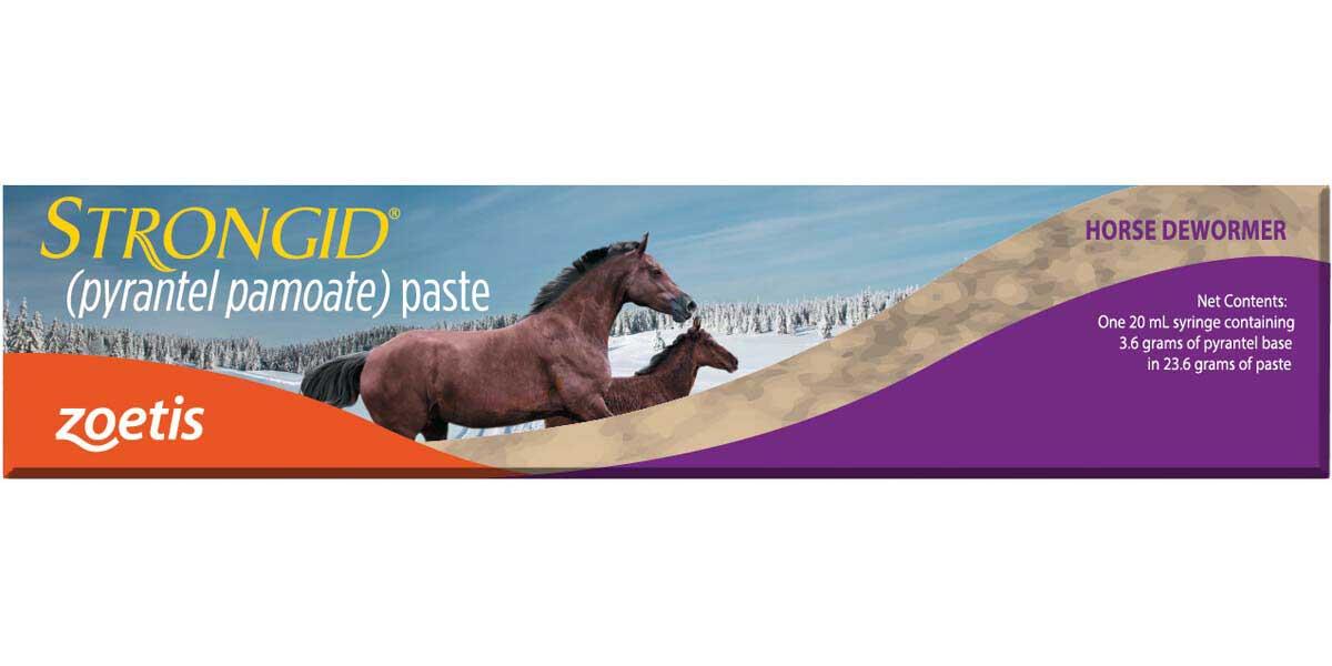Strongid Paste Horse Wormer Pyrantel Pamoate Zoetis