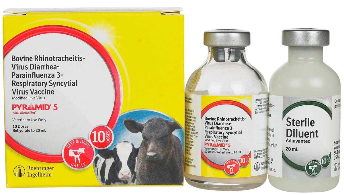 Pyramid 5 with Metastim Cattle Vaccine Boehringer ...