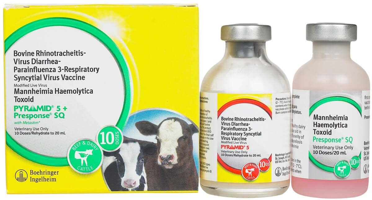 Pyramid 5 + Presponse SQ Cattle Vaccine Boehringer ...