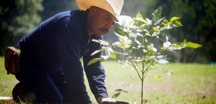 Nestlé y CONAFOR mantienen alianza de protección del Parque Nacional Izta-Popo y alrededores