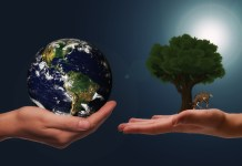 Sostenibilidad: el nuevo negocio