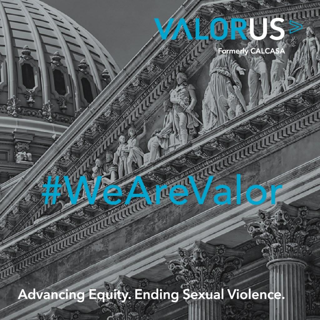 VALOR announces a web conference entitled New Laws and Legislation 2021 on Nov 17 2 - 3 pm PT