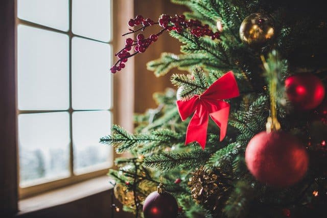 Is Your Christmas Tree Triggering Mold Allergies?: Have your ever heard of Xmas tree syndrome? There is a reason that 1 in 3 people get sick soon after setting up their tree. This article explains why and what you can do. Learn more!