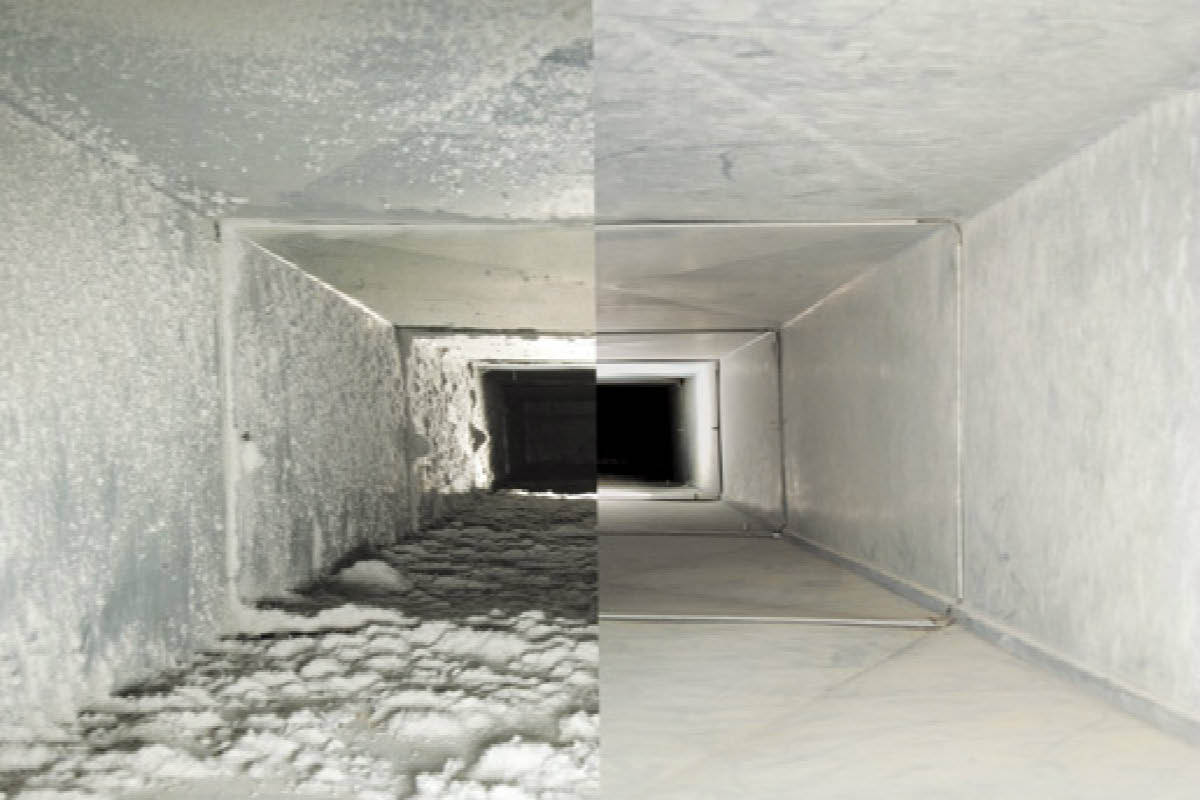 Sears Carpet Upholstery and Air Duct Cleaning  Local