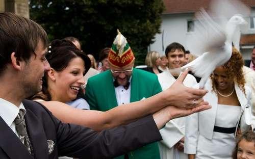 Hochzeitsfotografie Tipps und Tricks  Wien sterreich