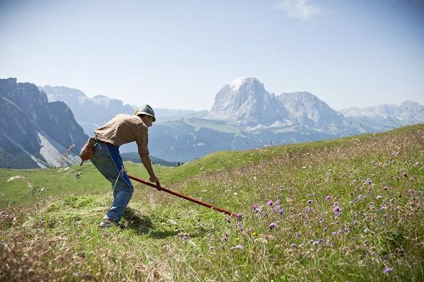 agricoltura-di-montagna