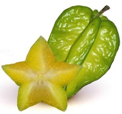 starfruit and cross section
