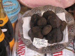 Black truffles for sale