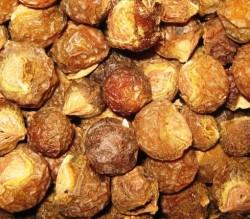 dried reetha